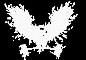 Crossfit - logga_Stor_2